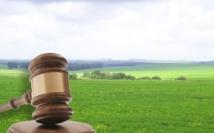 Регистрация прав в ЕГРН на объекты капитального строительства и земельные участки